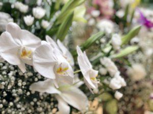 名古屋市北区 平安会館 名古屋斎場 供花